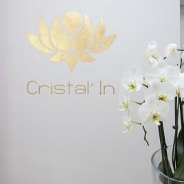 Centre Cristal'in - L'accueil